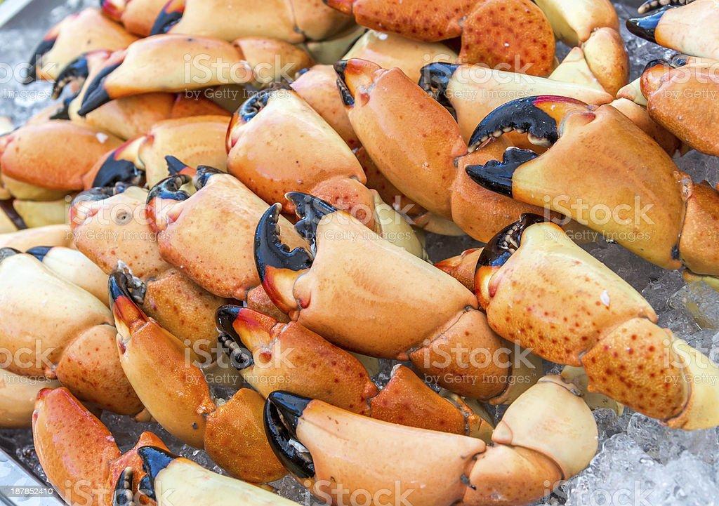 Stone Crab Tray stock photo