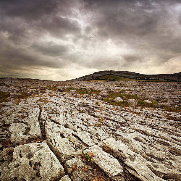 stone desert - county clare stock pictures, royalty-free photos & images