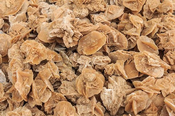 stone desert roses - rose des sables photos et images de collection