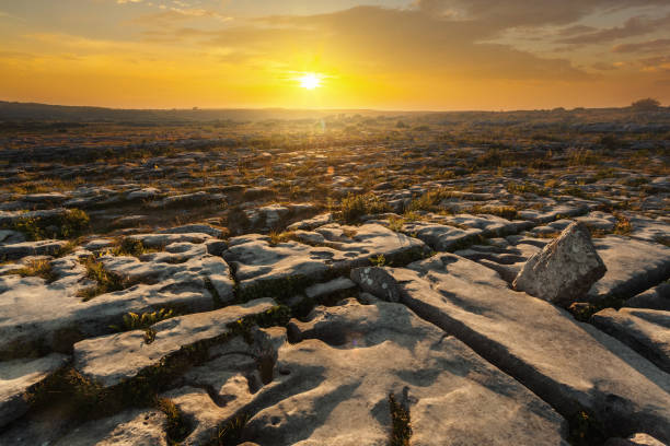 stone desert - the burren - in county clare, ireland - the burren stock pictures, royalty-free photos & images