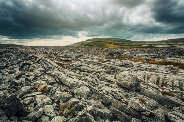 stone desert - the burren - in county clare, ireland - county clare stock pictures, royalty-free photos & images