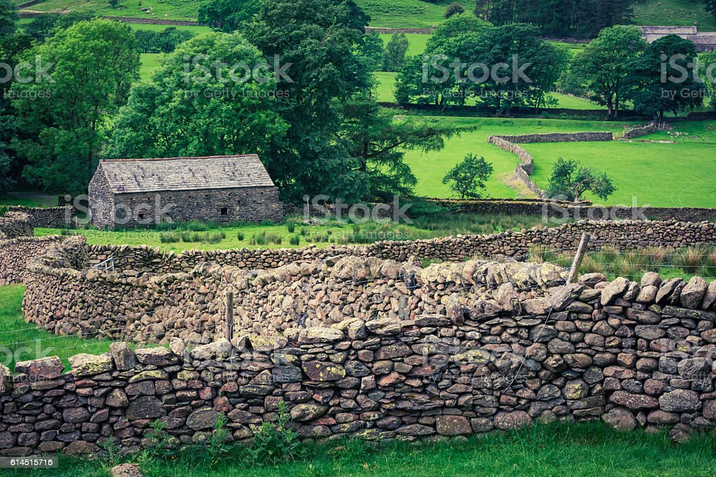 Stone fence and a house in the Lake District, England stock photo