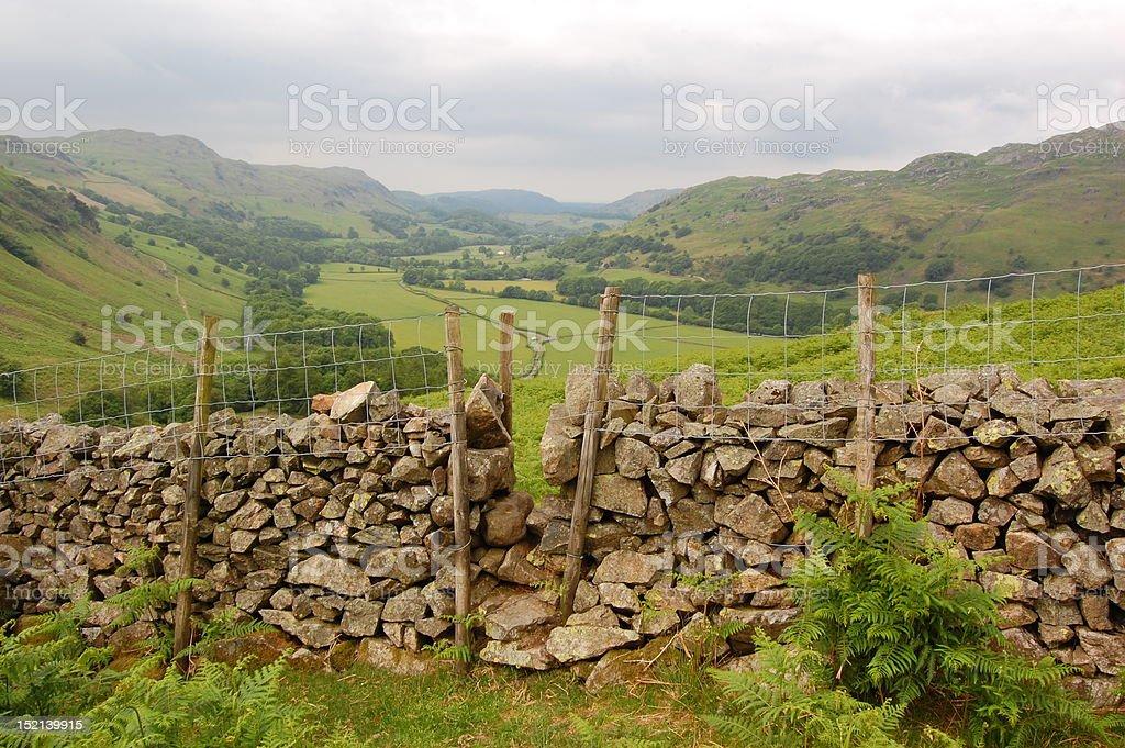 Stone Fence, Lake District stock photo