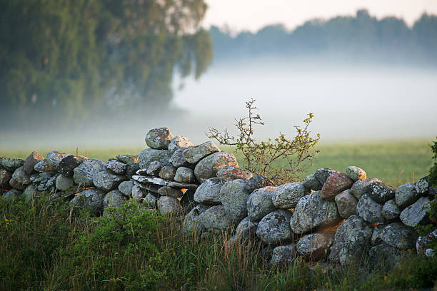 Stone Zaun mit Nebel im background.TN – Foto