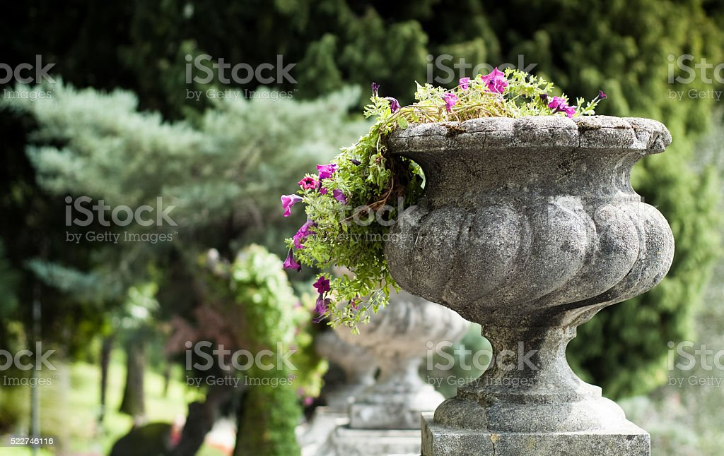 Stone Flower Vase stock photo