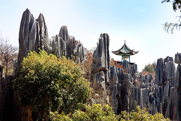 중국 stone forest - 쿤밍 뉴스 사진 이미지