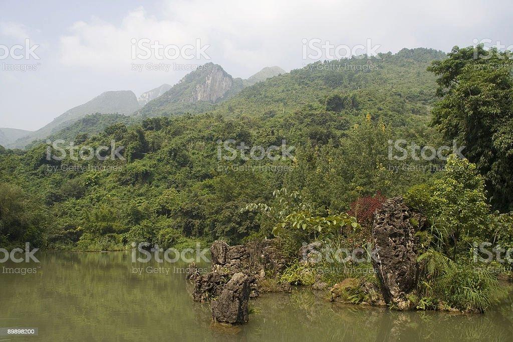 Bosque de piedra en lake de Guizhou, China foto de stock libre de derechos
