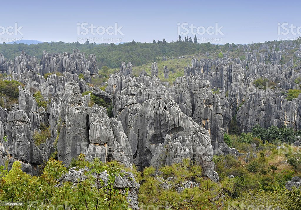Stone forest landscape in China stock photo