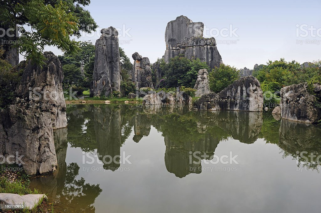 Stone forest royalty-free stock photo