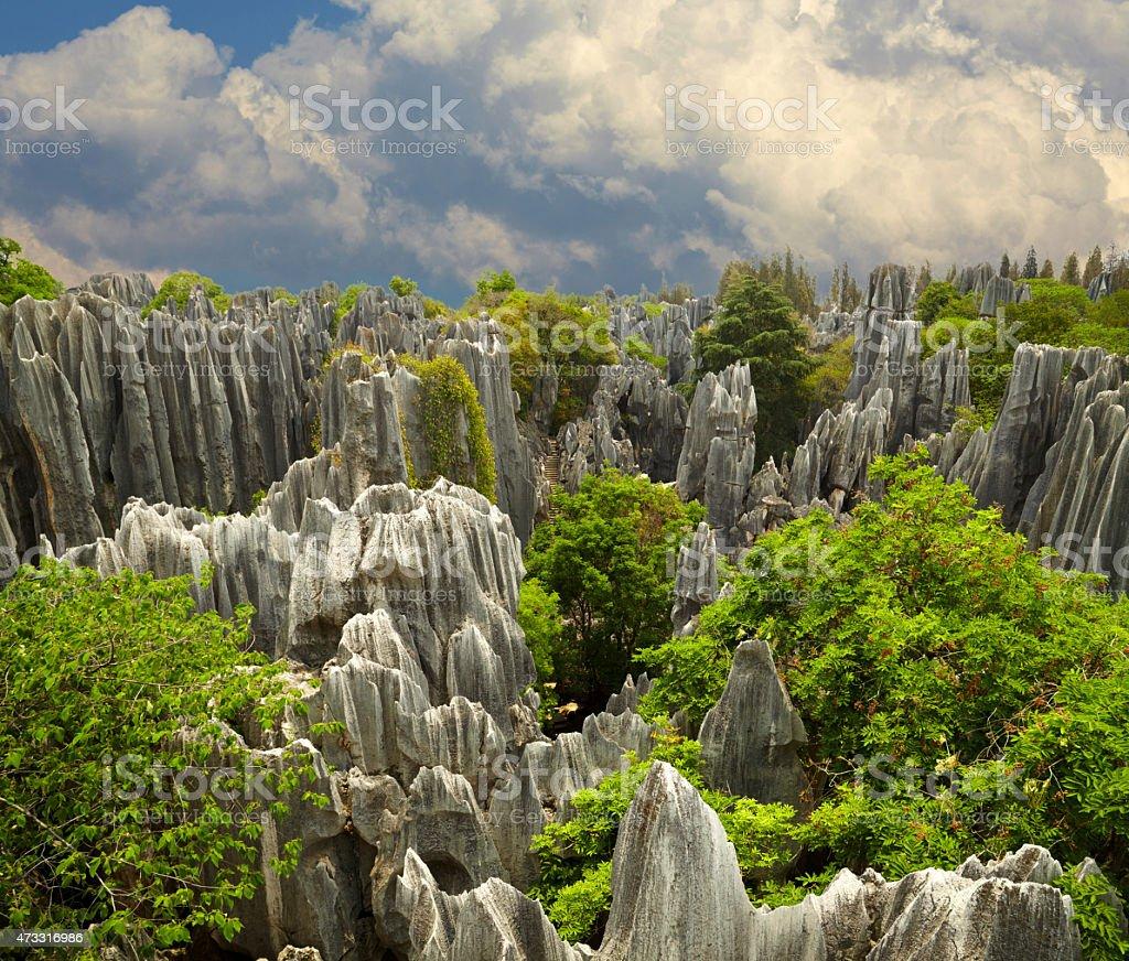 Bosque de piedra Shi Lin.   Parque nacional en la provincia de Yunnan, China - foto de stock