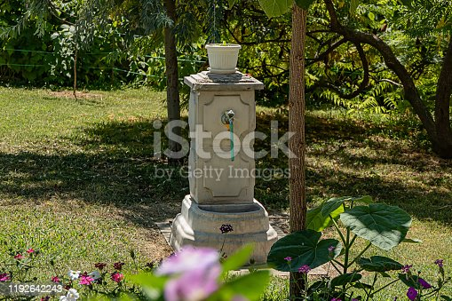 Photography of Garden Fountain Made of Stone with Faucet and Garden Hose in the Grassy Backyard with Flowers and Plants.