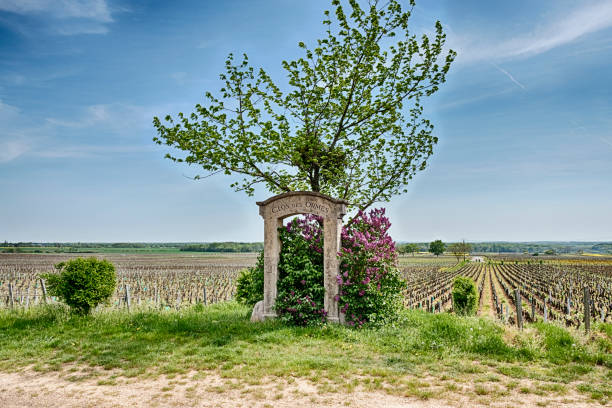 Stone Gate in der Nähe von The Clos des Ormes Weinberg – Foto