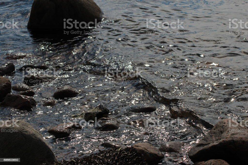 Stone in beach royalty-free stock photo