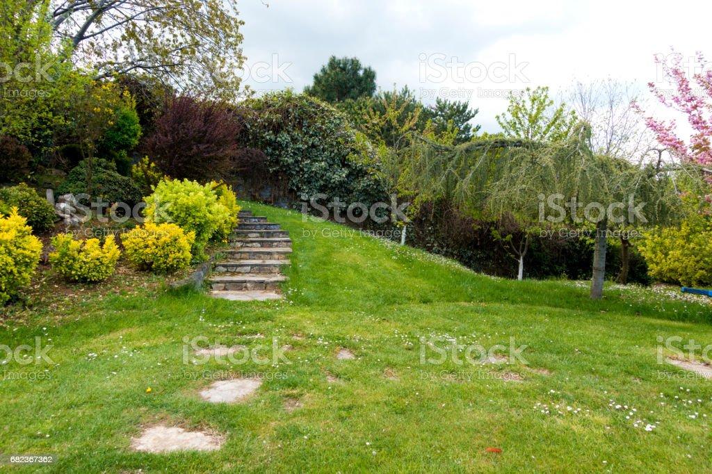 Stone Ladder in garden at springtime zbiór zdjęć royalty-free