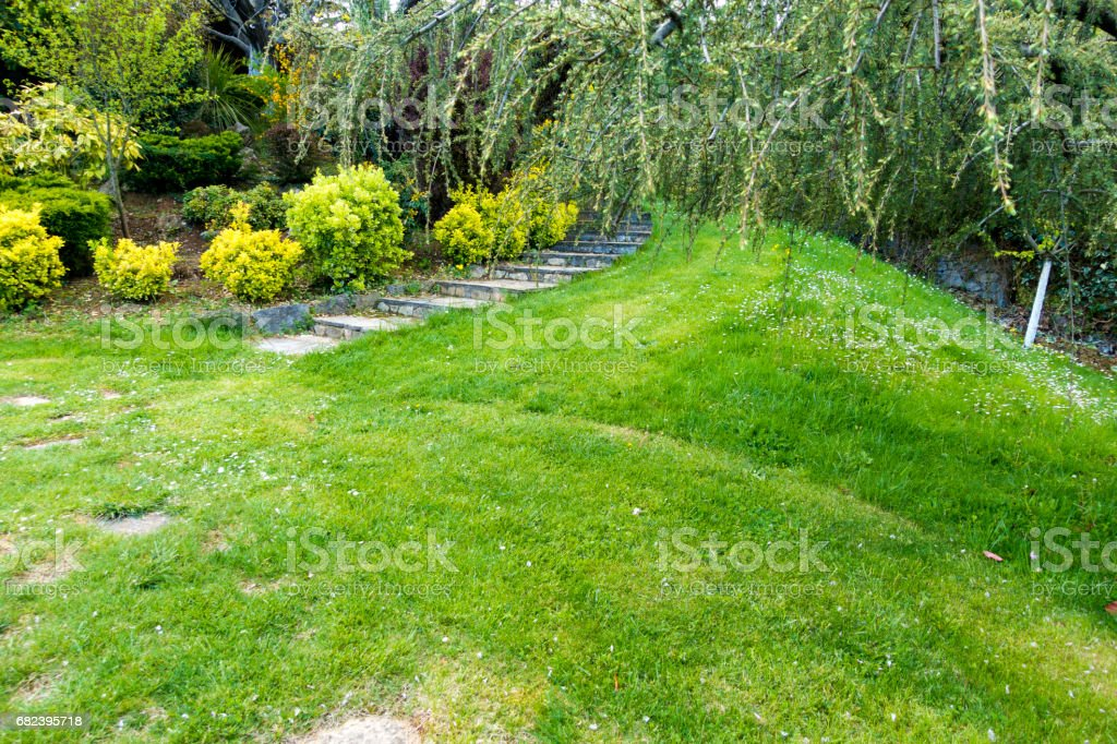 Stone Ladder in garden at springtime royalty-free stock photo