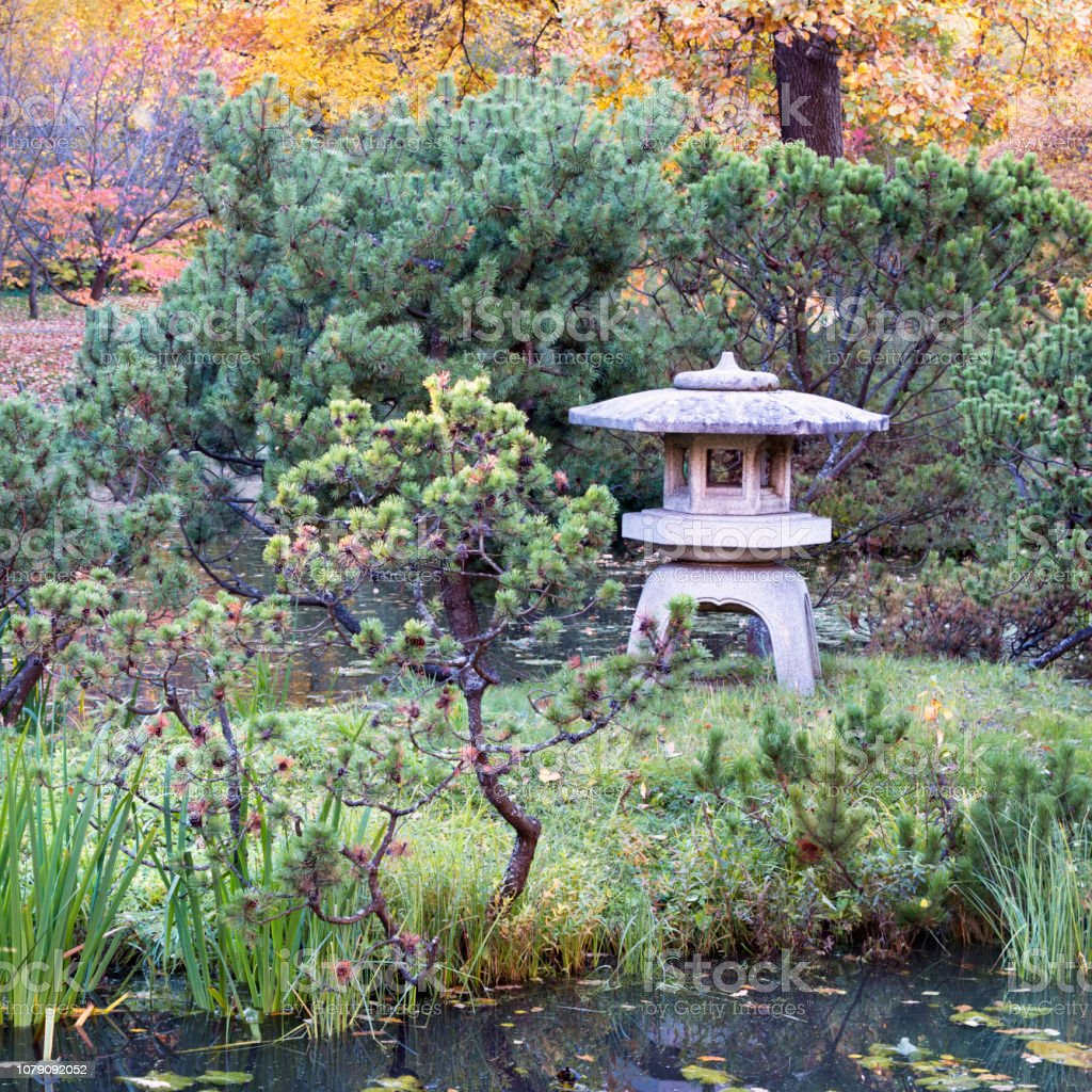 Stone Lantern Surrounded By Bonsai Trees In A Japanese Garden Stock Photo Download Image Now Istock