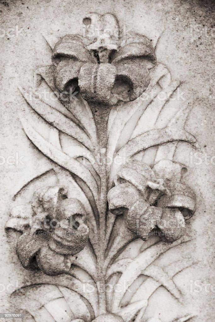 stone lily royalty-free stock photo