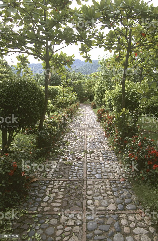 Stone lined garden path. stock photo