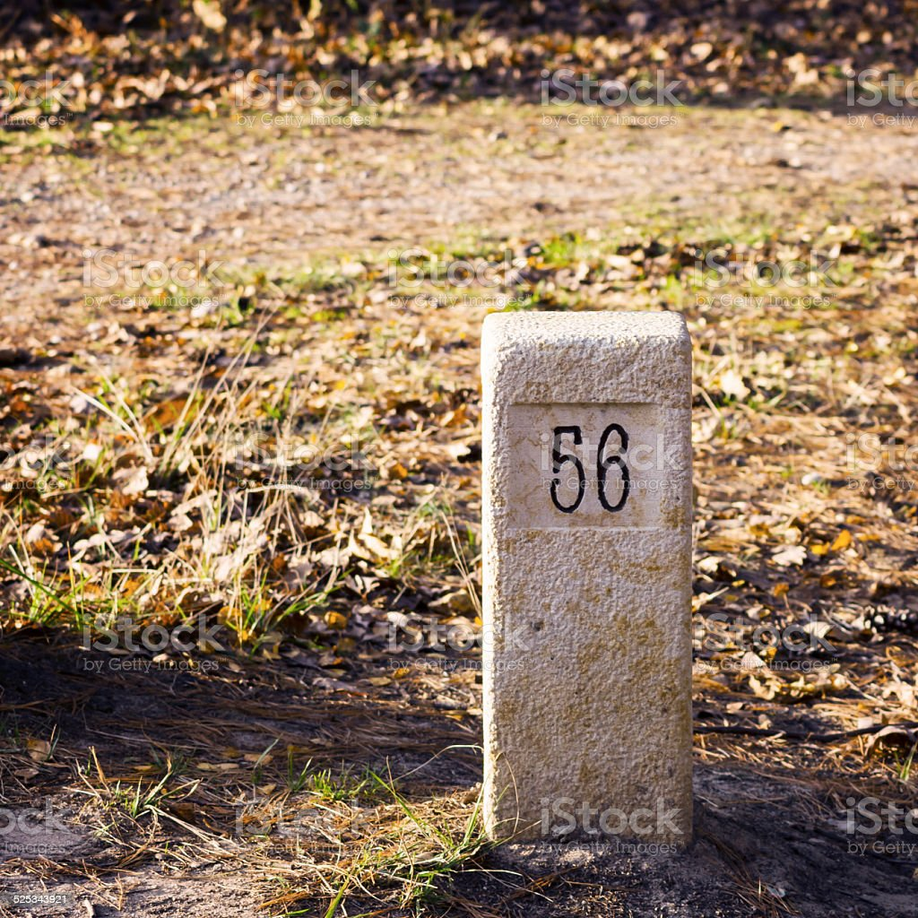 Stone milestone on a forest road stock photo