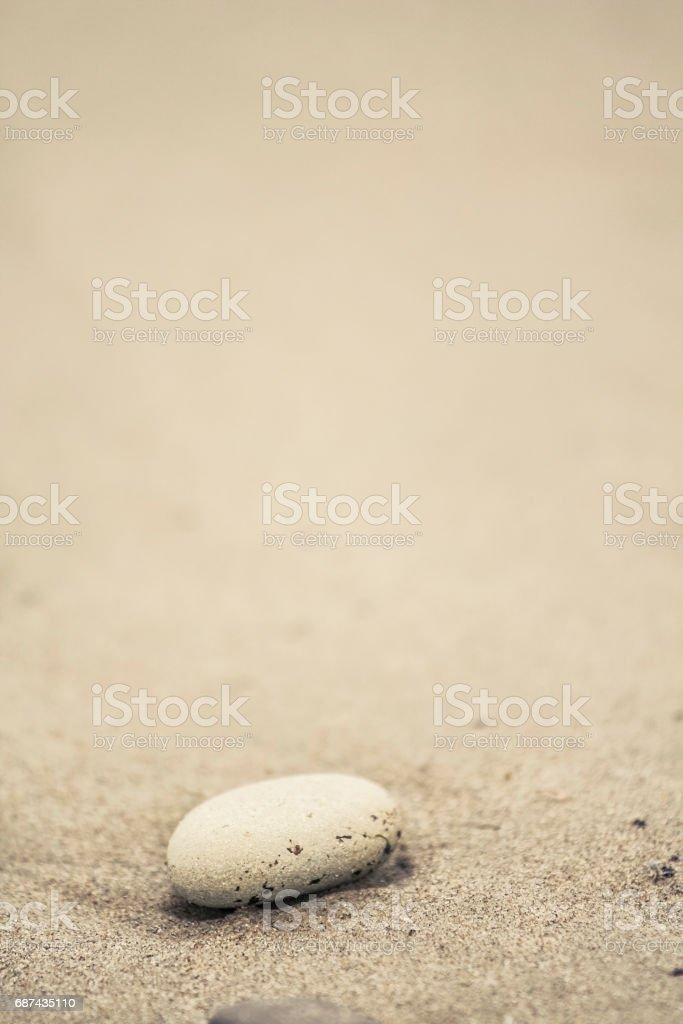 Stone on a beach – Foto