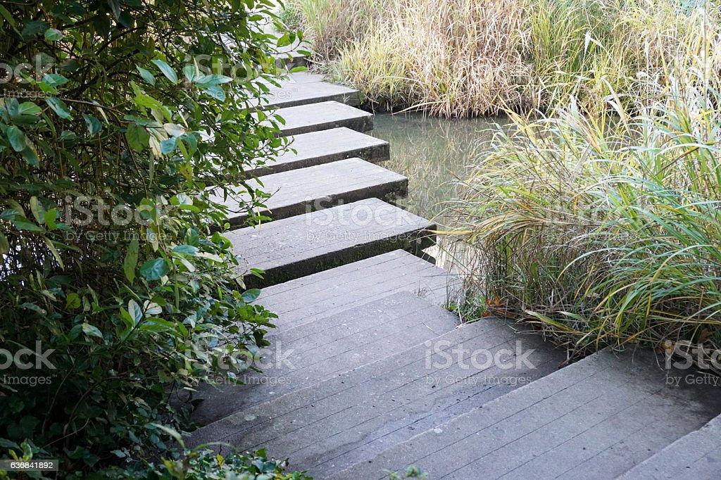 stone path across river in garden stock photo