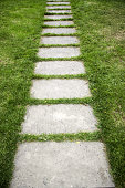 Stone path in the grass, detail of pedestrian path