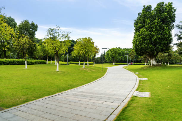Stein Weg in einen üppig grünen Park – Foto