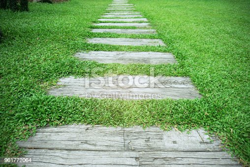 Stone Pathway in the park with green grass background.