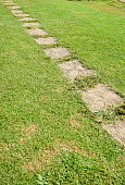 stone path on the lawn in outdoor yard