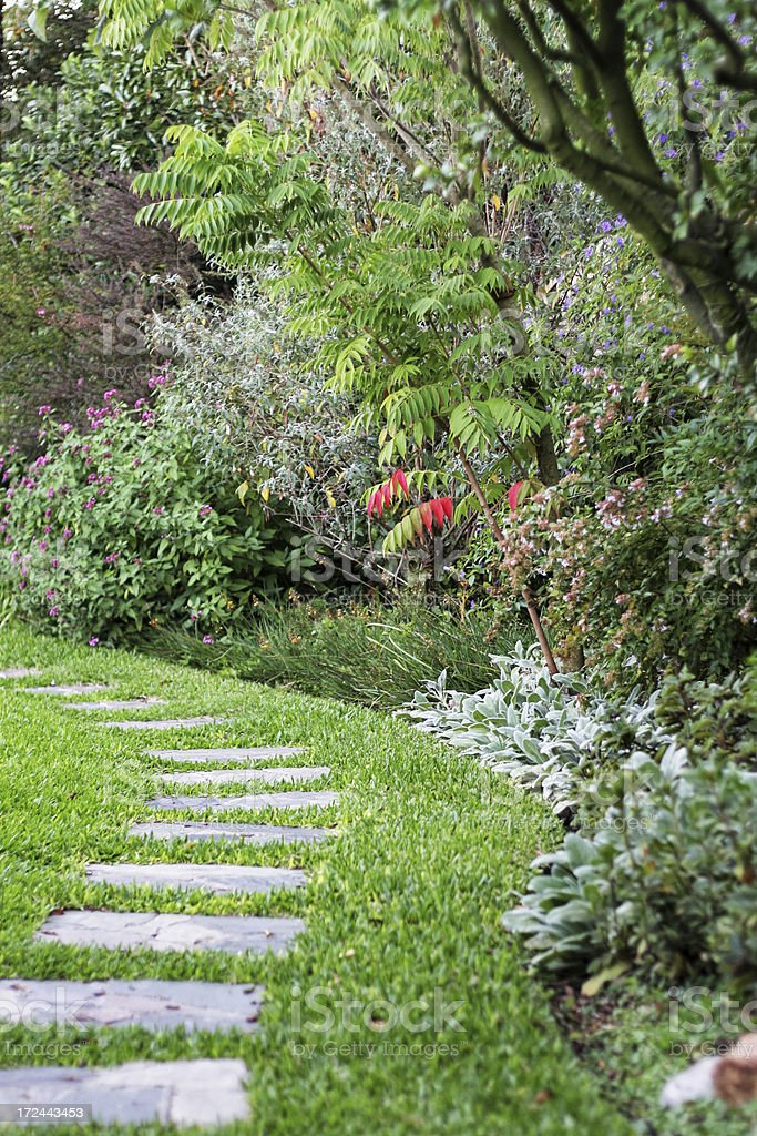 Stone pavement path in s shape in a lush foliage garden royalty-free stock photo