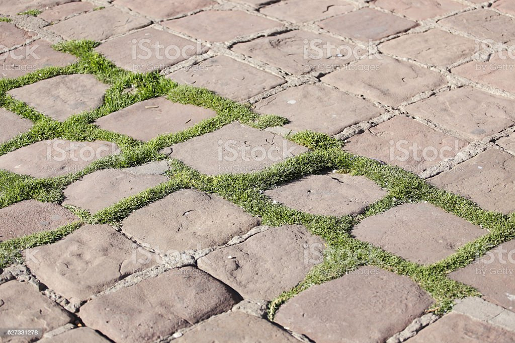 Stone pavement pattern of an urban street stock photo