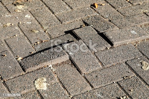 Stone pavers, the oblong brick blocks that make up some paved surfaces, are easily disturbed by tree roots to form a hazardous uneven surface. This kind of movement is sometimes called heaving.