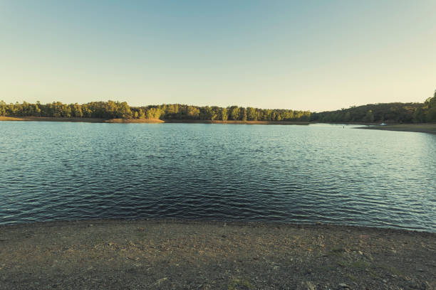 Stein-Ufer in den Serrano-Seen mit Eukalyptus-Wald im Hintergrund – Foto