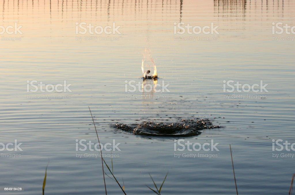 Stone Skimming - Across the lake stock photo