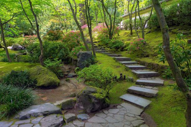 stein-treppenstufen in portland japanischer garten im frühling saison oregon usa - japanischer garten stock-fotos und bilder