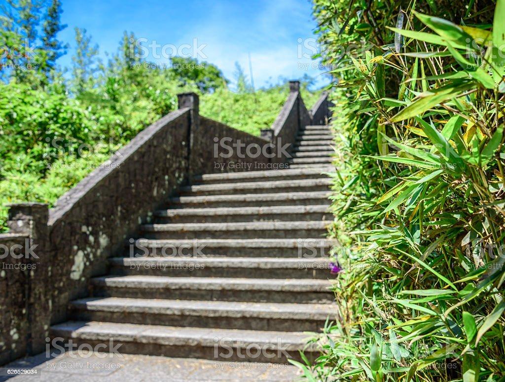 Stone staircase and bamboo wall at Mirante Dona Marta, RJ stock photo