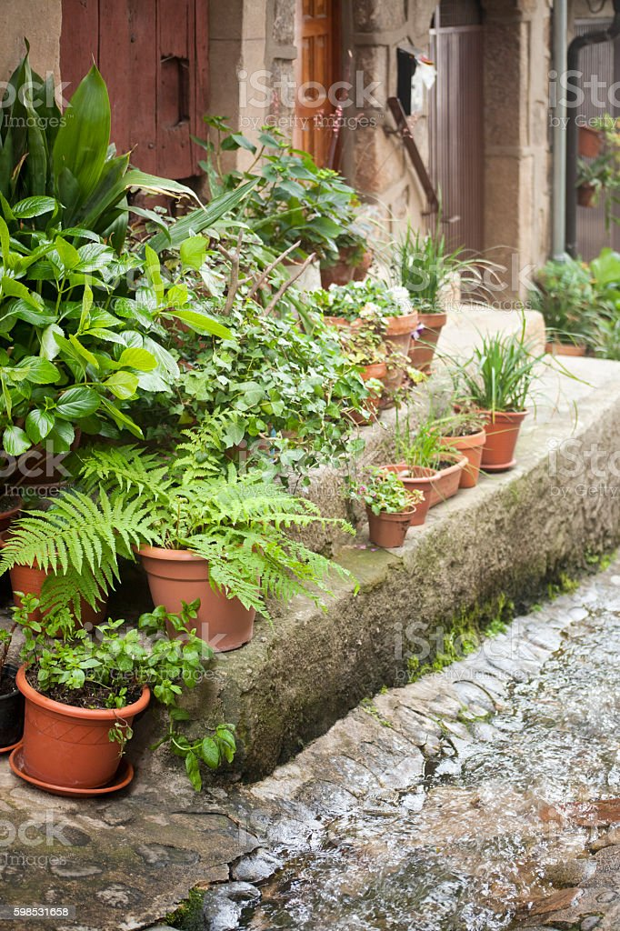 Stone staircase, doorway, plant pots, street stream. photo libre de droits