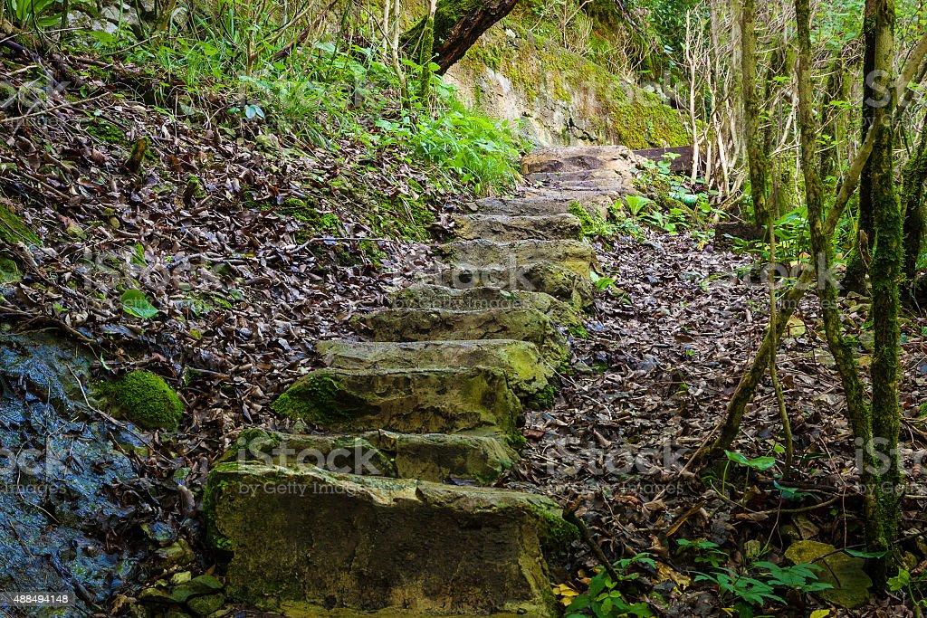 stone staircase into the gorge stock photo