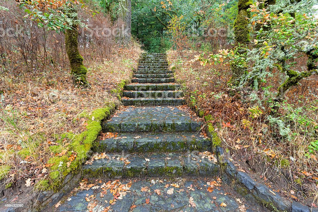 Stone Stairs at Eagle Creek Overlook stock photo