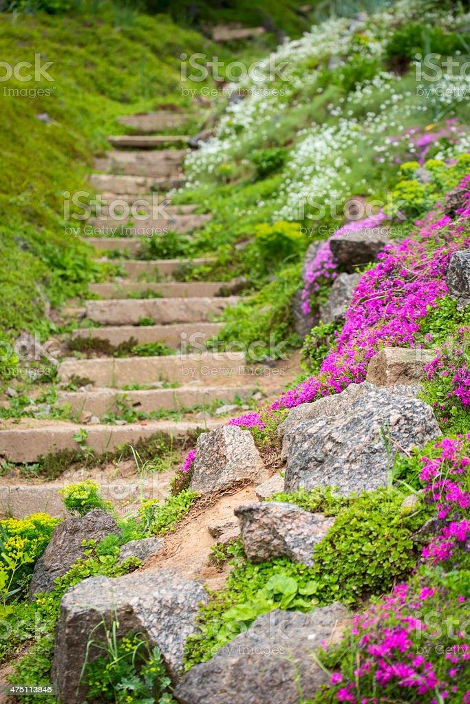 Photo libre de droit de Escaliers En Pierre Au Jardin banque ...