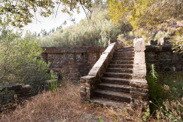 Stone Stairs on the middle of the Woods, Portugal stock photo