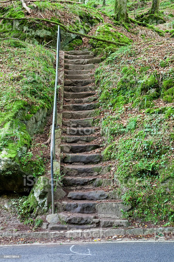 stone stairway in the forest royalty-free stock photo