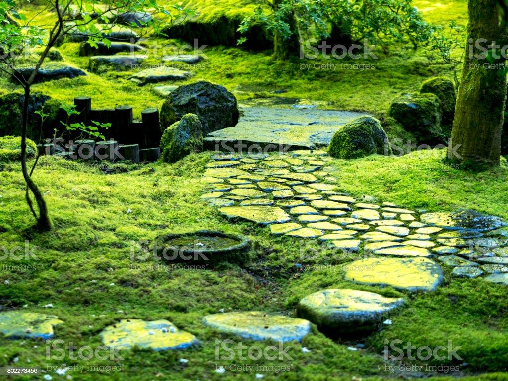 Schritte Green Moss Japanischen Steingarten Oregon
