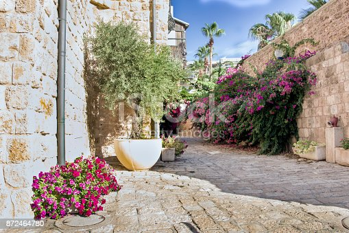 istock Stone streets of the ancient city of Jaffa, Israel 872464780