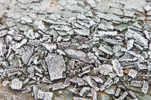 Stone surface covered with hoarfrost