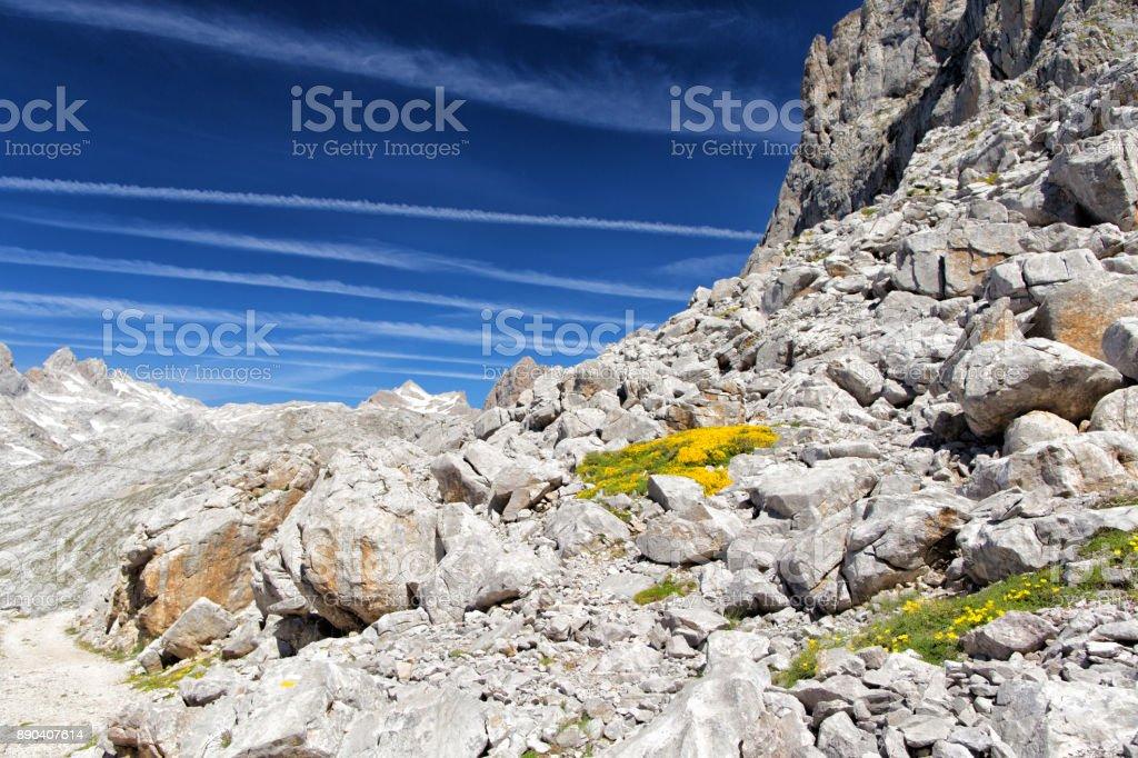 Stone talus in mountains. stock photo