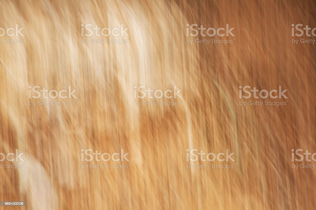 Stone texture on sand. Abstract motion blur effect. royalty-free stock photo