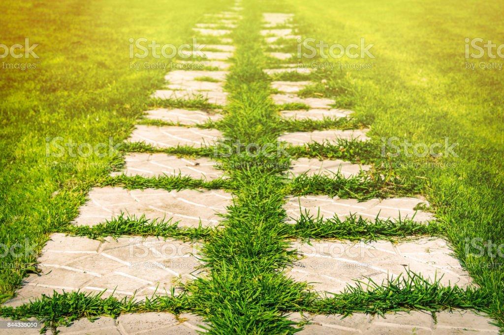Stein Fliesen Gehweg im Garten – Foto