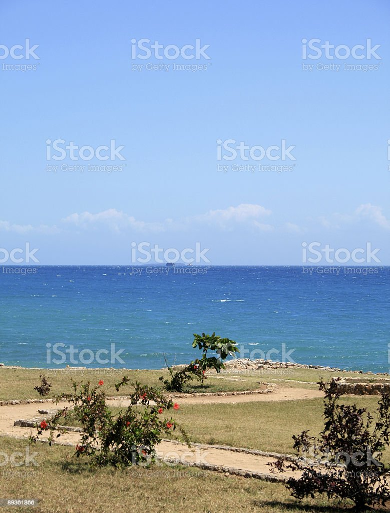 Stone Town Zanzibar royaltyfri bildbanksbilder