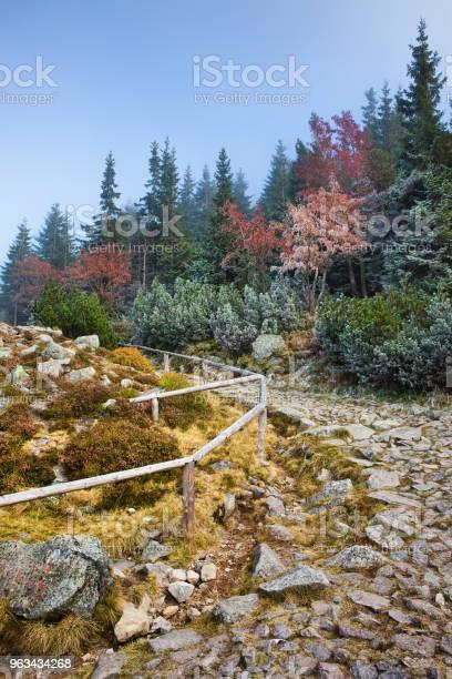 Kamienny Szlak W Górach - zdjęcia stockowe i więcej obrazów Balustrada - Granica